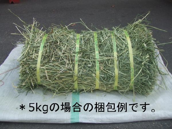 アメリカ産プレミアムホースチモシー牧草